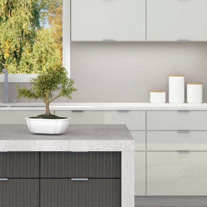 kitchen counter with plant on it